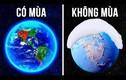 Video: Điều gì sẽ xảy ra nếu không có các mùa trên Trái Đất?