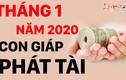 Video: Top con giáp phát tài nhanh chóng, tiền bạc ùn ùn về tay tháng 1/2020