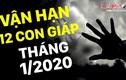 Video: Vận hạn tháng 1/2020 của 12 con giáp: Ai đang bị tiểu nhân rình rập?