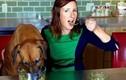 Video: Nghề thử thức ăn thú cưng và top công việc kỳ lạ nhất thế giới
