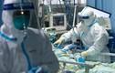 Video: Bệnh nhân nhiễm virus corona được xét nghiệm như thế nào?