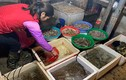 Chiêu bán hàng mới, chị bán rau, bà buôn cá bình thản mùa dịch