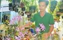 Chàng trai trồng 2.000 giò lan, có 20 loài lan giả hạc quý hiếm