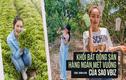Mục sở thị bất động sản chục ngàn mét vuông của sao Việt