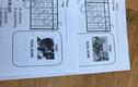 Giáo viên dùng 2 hình ảnh MV ca nhạc đình đám làm mã đề