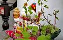 Biến củ khoai lang thành bonsai, làm đẹp nhà ấn tượng