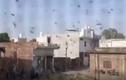 """Video: """"Giặc"""" châu chấu bay kín bầu trời Ấn Độ"""