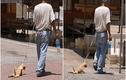 """Kéo lê chó trên đường, chủ nhận """"quả đắng"""""""