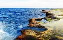 Kỳ thú rạn san hô cổ hóa thạch trên cạn