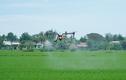 Dùng thiết bị bay phun thuốc, phân bón trên đồng lúa