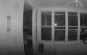 Video: Gấu biết mở cửa đột nhập vào nhà dân để ăn pizza