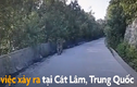Video: Hổ nằm giữa đường khiến tài xế taxi không dám di chuyển
