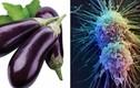 """Những thực phẩm là """"kẻ thù"""" của ung thư, nên bổ sung hàng ngày"""