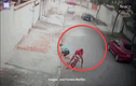 Video: Bé trai bị chó pitbull lao vào cắn xé