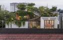 Căn nhà có 'công viên xanh' trên sân thượng ở TP.HCM