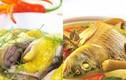 Ăn cá chép om dưa dễ mắc ung thư dạ dày