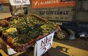 Trái cây Việt giá rẻ chưa từng có tràn lan khắp vỉa hè