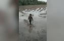 Video : Cậu bé một mình chơi đùa với con rắn giữa ruộng