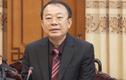 Những đại gia Việt bị bắt giam trong năm 2020