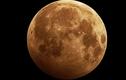 Nga phát triển thiết bị tìm kiếm kim loại quý trên Mặt trăng