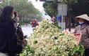 Chủ sạp bỏ quả bán hàng chục cân hoa bưởi, thu tiền triệu mỗi ngày