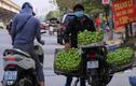 Hoa quả giá rẻ không rõ nguồn gốc bán tràn lan trên phố Hà Nội
