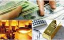 Có tiền lúc này nên gửi tiết kiệm hay mua vàng?