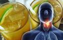 10 thực phẩm rất tốt cho cổ họng, giúp chống viêm kháng khuẩn hiệu quả