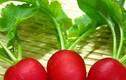 5 loại rau củ cứ tưởng bổ nào ngờ sinh bệnh hại thận