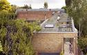 Vườn lạ như kim tự tháp có 800 cây trên mái nhà giữa phố thị