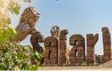 Hàng loạt sư tử ở Ấn Độ mắc Covid-19