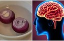 5 triệu chứng chứng tỏ bạn đang bị thiếu máu não