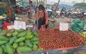 500 nghìn mua được thức ăn cả tuần, người dân đổ xô đi chợ đầu mối
