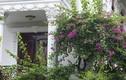 Ngôi nhà có mặt tiền hoa giấy cực lãng mạn khiến ai nhìn cũng mê