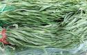 Bó rau khô như nắm rơm mà giá tận 500.000 đồng/kg