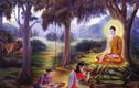 Phật dạy cách để con người mang theo phú quý tới kiếp sau