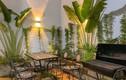 Hai mẫu nhà cấp 4 đẹp như resort với thiết kế độc nhất vô nhị