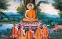 Lời Phật dạy về hạnh phúc, bạn càng tâm niệm càng rước thiện lành