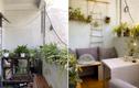 Cô gái xây dựng khu vườn ở ban công từ đồ đạc tự làm