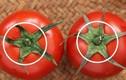Mua cà chua đừng nắn bóp, nhớ 5 điều này để chọn được quả ngon