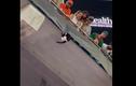 Video: Thót tim xem khoảnh khắc chú mèo rơi tự do từ khán đài