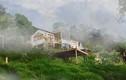 Cô gái về quê dựng ngôi nhà gỗ cheo leo bên sườn núi đẹp mê hồn