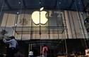 Kiểm tra túi xách nhân viên, Apple phải bồi thường 60 triệu USD