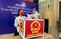 Nghệ sĩ Việt dậy sớm đi bầu cử, chia sẻ cảm xúc