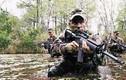 Điểm danh những lực lượng sừng sỏ nhất Quân đội Mỹ