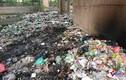 Hàng ngàn túi rác ken đặc dưới chân cầu Thăng Long