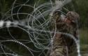 """Cận cảnh lính Mỹ """"rào kín"""" biên giới với Mexico bằng dây thép gai"""