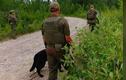 Canada truy nã gắt gao 2 nghi phạm thiếu niên giết hại 3 người
