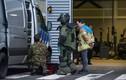 Hoang mang: Bom thư xuất hiện hàng loạt tại nhiều thành phố của Hà Lan