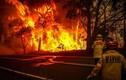 Cháy khu nhà cho người khuyết tật, ít nhất 8 người thiệt mạng